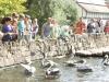 Hallesche Zootage im Bergzoo - Zoo nah dran!