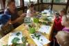 Ferienworkshops im Peißnitzhaus Halle  - noch Plätze frei