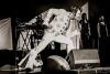 Elvis!! - mehr braucht man einem Fan nicht zu sagen